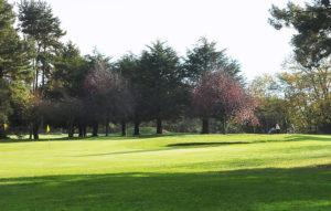 Massereene Golf Club