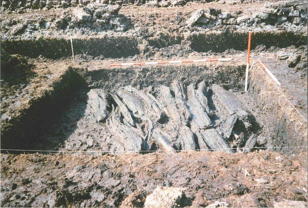 Plate-11-Derryloughlan-Trackway-1---Large