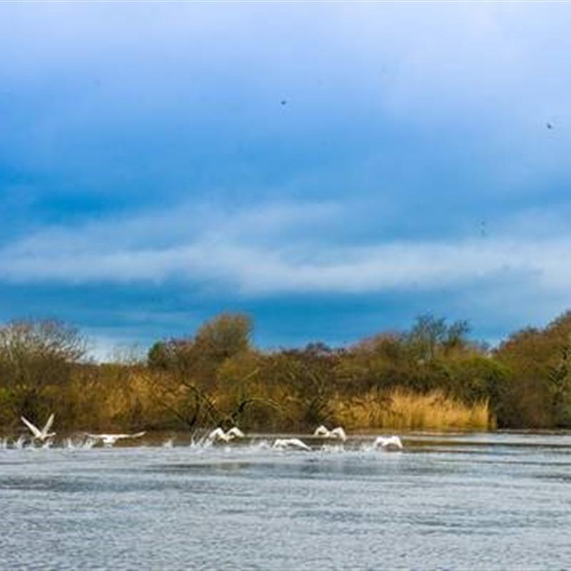 Lough Neagh Adventure Tour