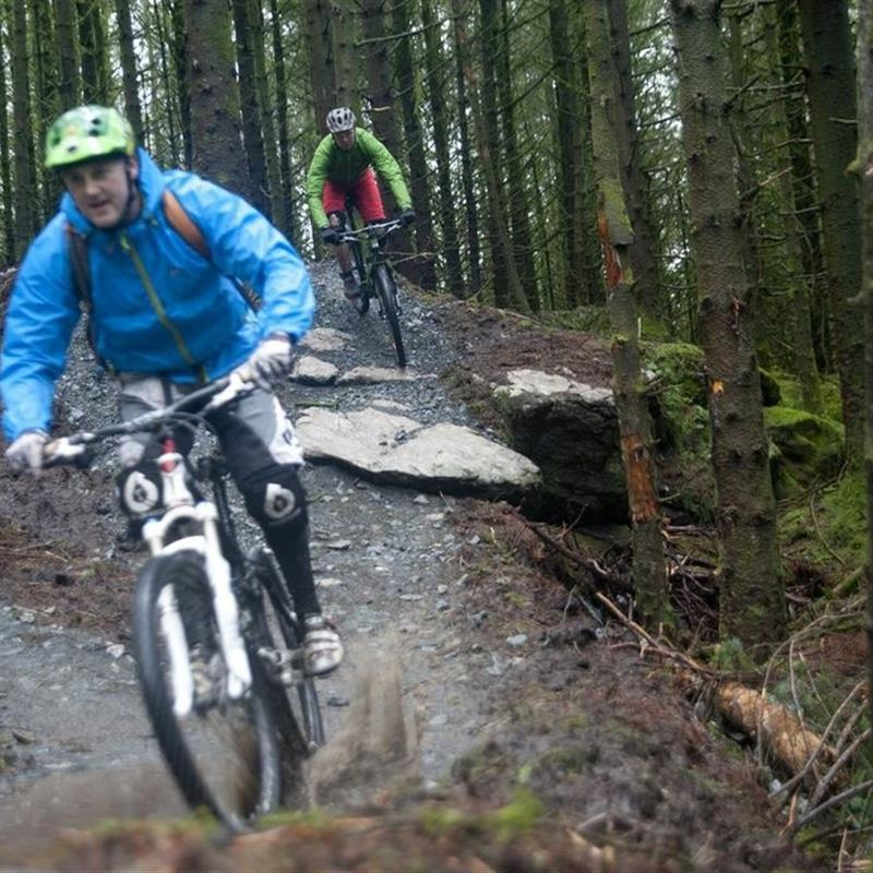 Davagh Forest Mountain Bike Trails